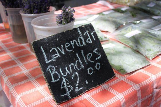 Picton market lavender
